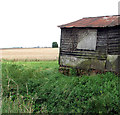 TF6013 : Shed in the fens by Wiggenhall St Peter by Evelyn Simak