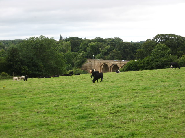 A view to Lothian Bridge near Pathhead in Midlothian