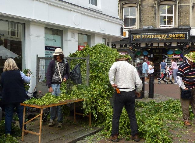 Faversham Hop Festival 2012