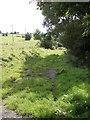 SE1132 : Footpath - Low Lane by Betty Longbottom