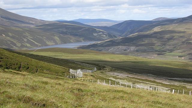 Fence, Culardoch