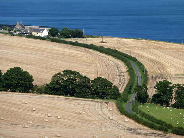 Farmland at Old Cambus West Mains