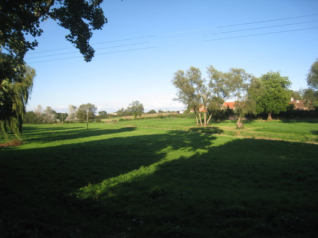 Stillingfleet Green