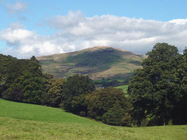 Pastureland near Shaw End