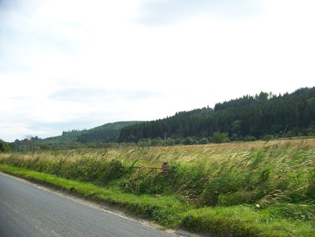 Looking towards the Crinan Canal from the road to Lochgilphead