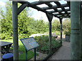 SK7953 : Lockside Park, Sensory Garden  by Alan Murray-Rust