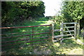 SP9242 : Path to Hurst End passes Moulsoe Old Wood by Philip Jeffrey