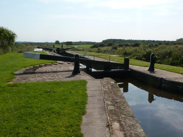 Forest Middle Bottom Lock