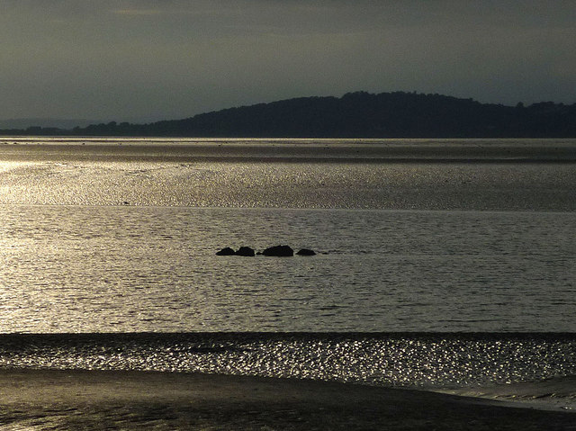 Sea serpent off Silverdale?