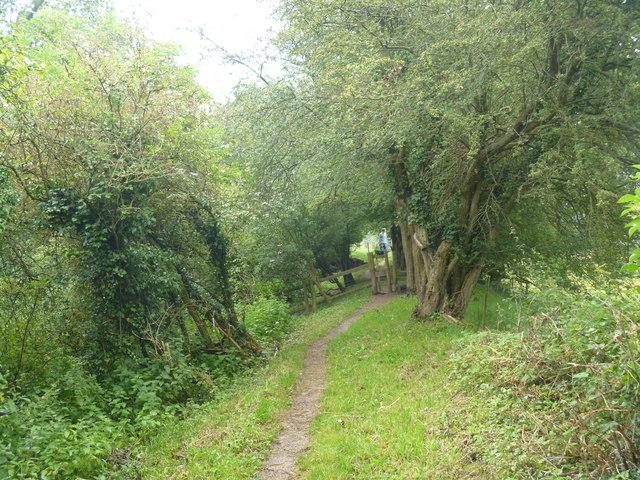 Stile on the path