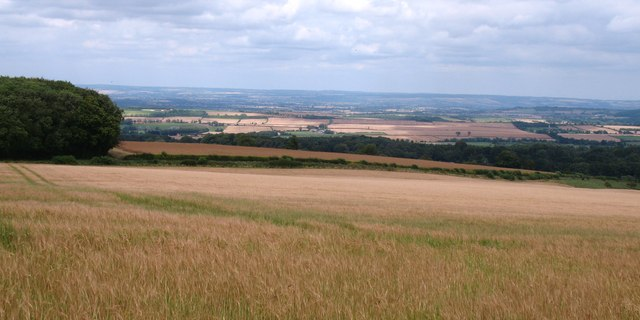 Wolds edge at Aldro