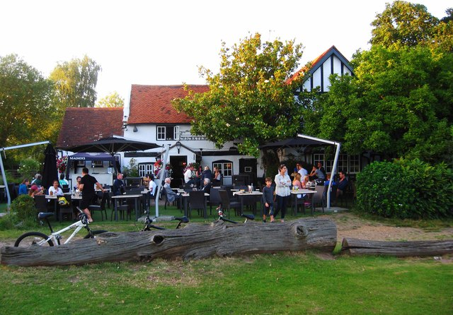 The Cricketers (2), Downside Common, near Cobham