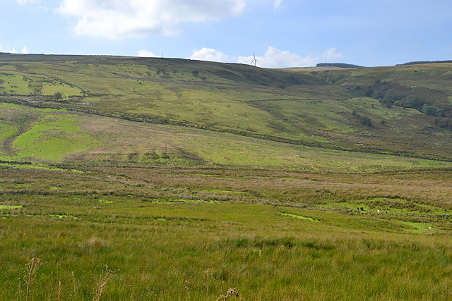 Moorland south of Nant-hir farm