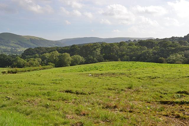 Field near Gerddi-gleison farm
