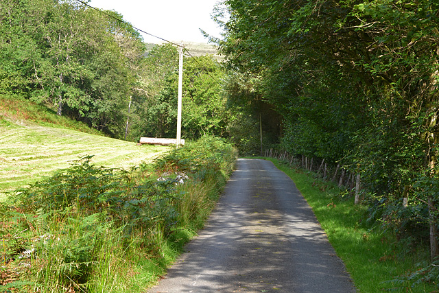 Minor road heading up Cwm Clegyrnant