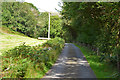 SH9106 : Minor road heading up Cwm Clegyrnant by Nigel Brown