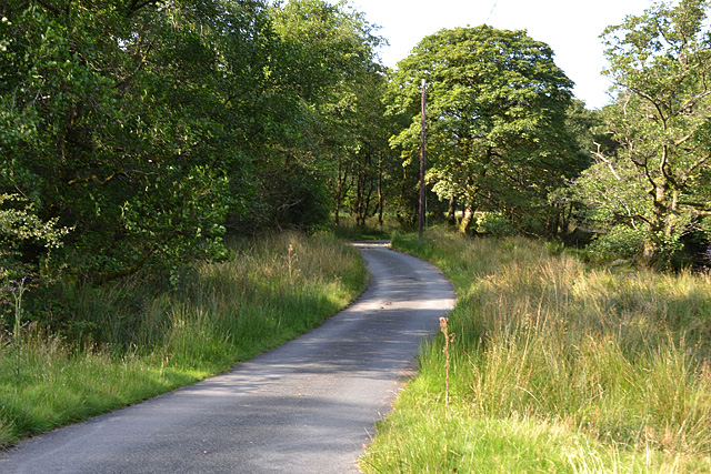 Road by the Clegyrnant