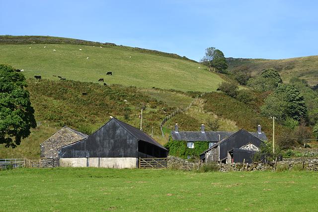 Clegyrnant farm