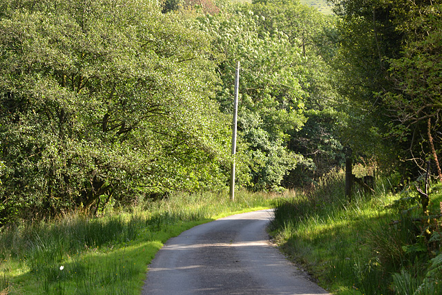 The road past Rhyd-y-meirch farm