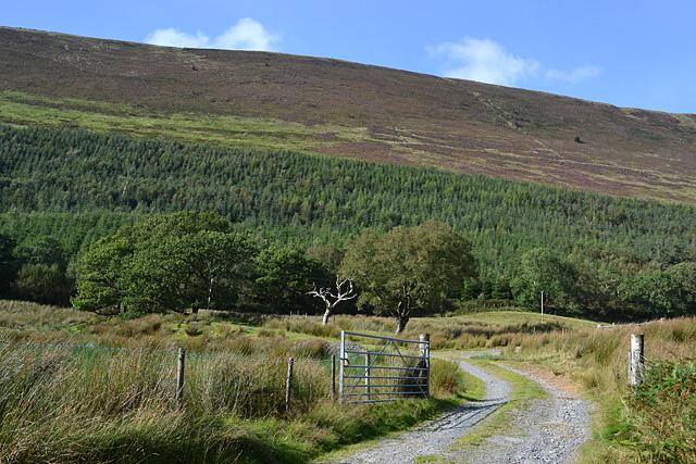 The southern flanks of Mynydd Rhiw-Saeson
