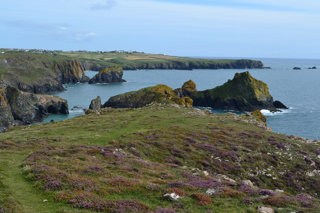 View from Kynance Cliffs looking back towards Lizard Point