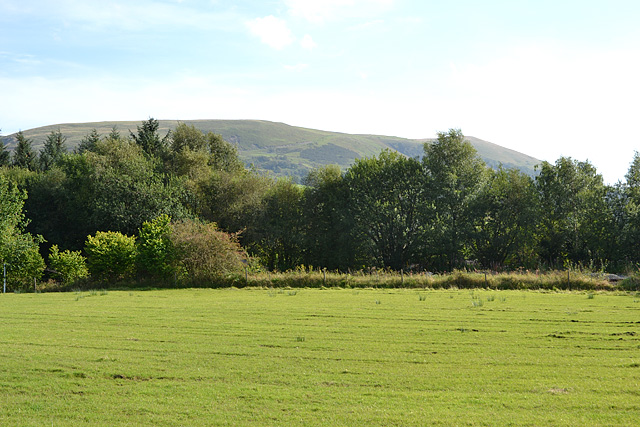 Field north of Llanbrynmair
