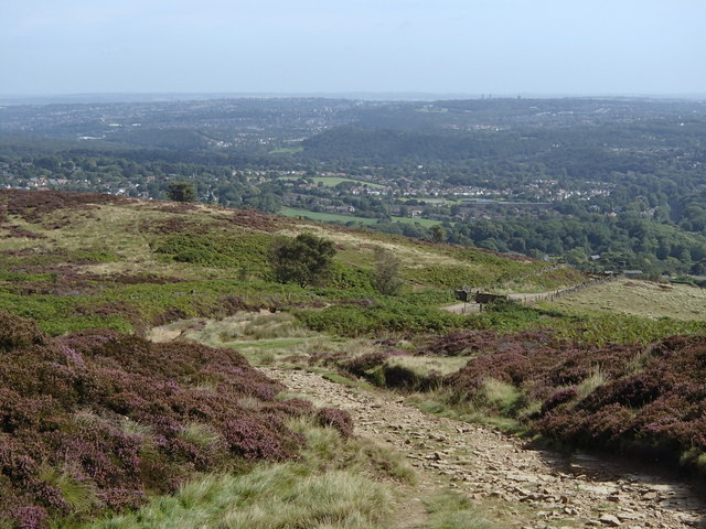 Track towards the edge of the moorland