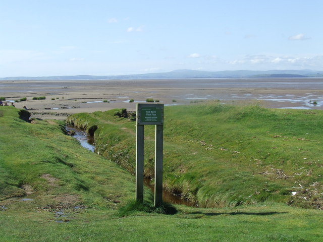 Red Bank Tidal Flap, near Bolton-le-Sands