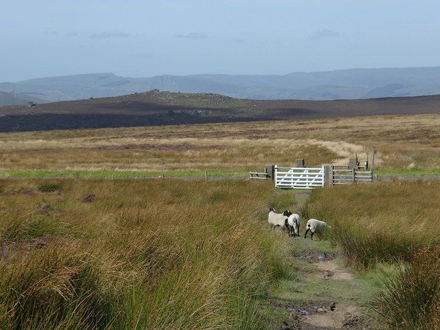 Path crossing the A625