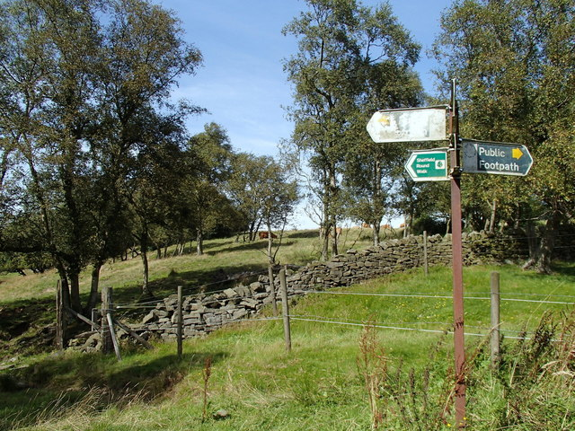 Footpath junction near the head of Limb Brook
