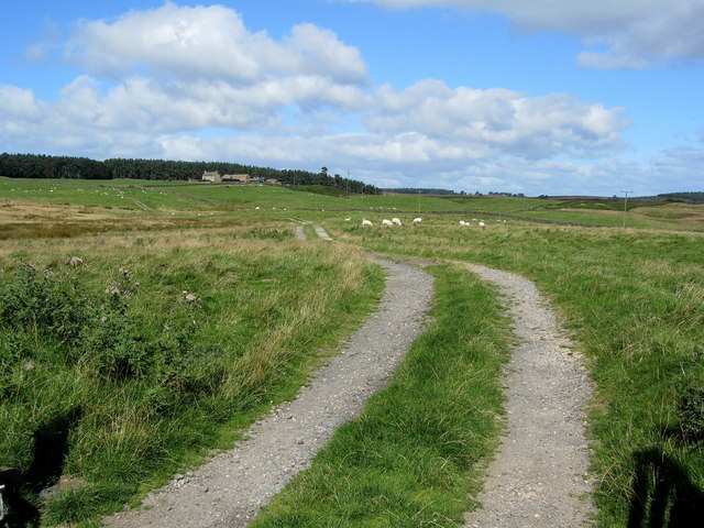 Access Track to Bales House