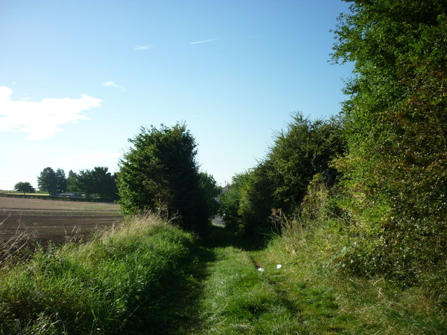 A track leading to Cobbler's Lane