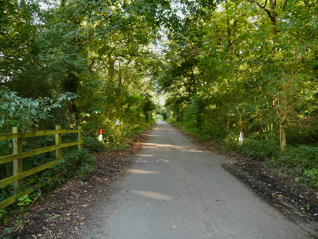 Marbury Country Park, Marbury Lane