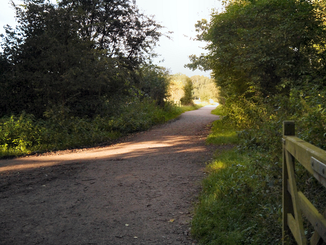 Bridlepath, Marbury Country Park