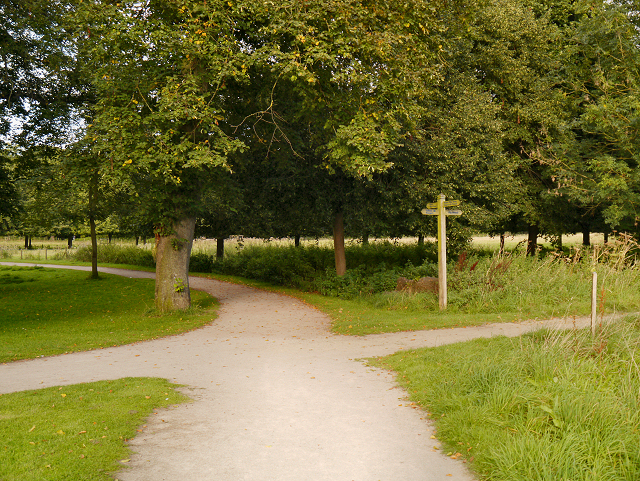 Paths Meet, Marbury Country Park