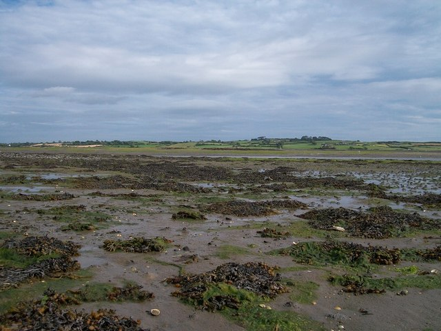 The muddy foreshore opposite Green Island in Dundrum's Inner Bay
