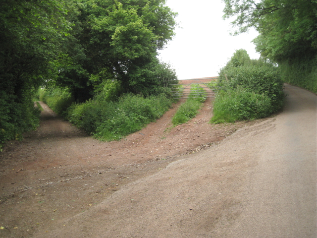 Teignharvey Road meets Forches Hill