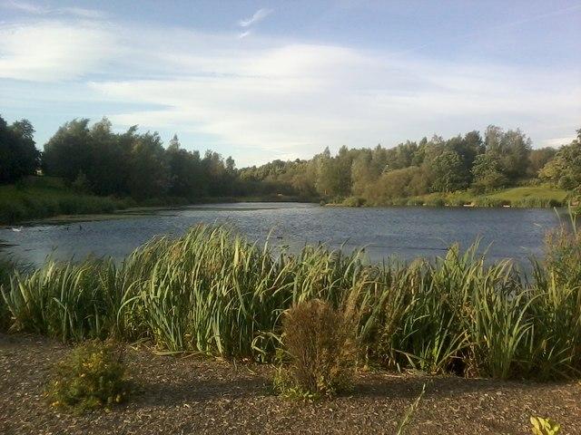 Chadwick Dams 1