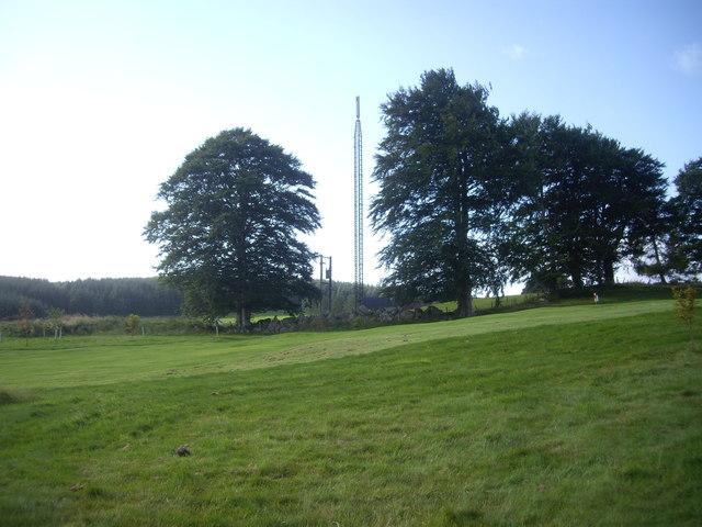Mast near Hilton, Lumphanan