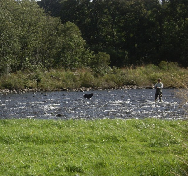 Fishing the Dee