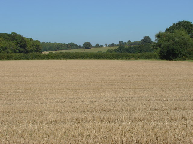 Stubble field, Newmarsh Farm