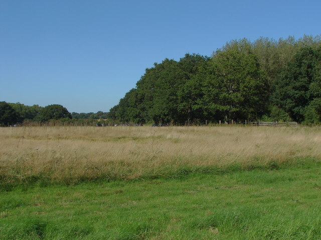 Bank's Common