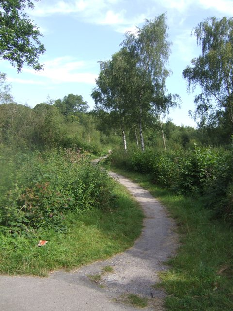 National Cycle Route 5 in the Mill Lane Nature Reserve