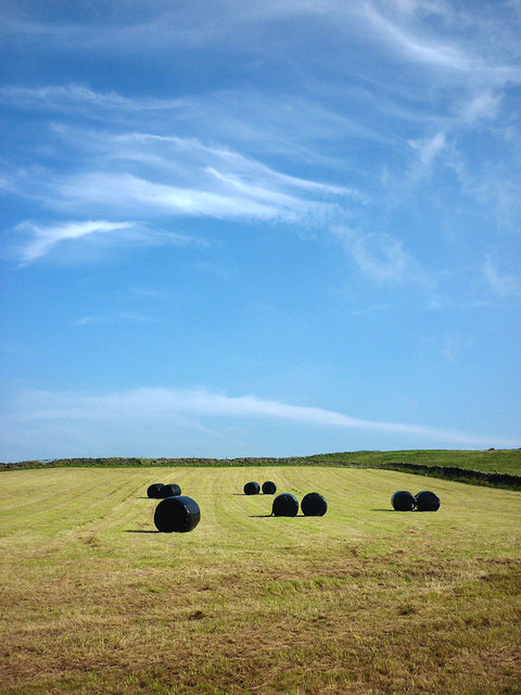 Bales on Barrow Wife Hill