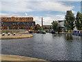 SJ8598 : Rochdale Canal, New Islington Marina by David Dixon