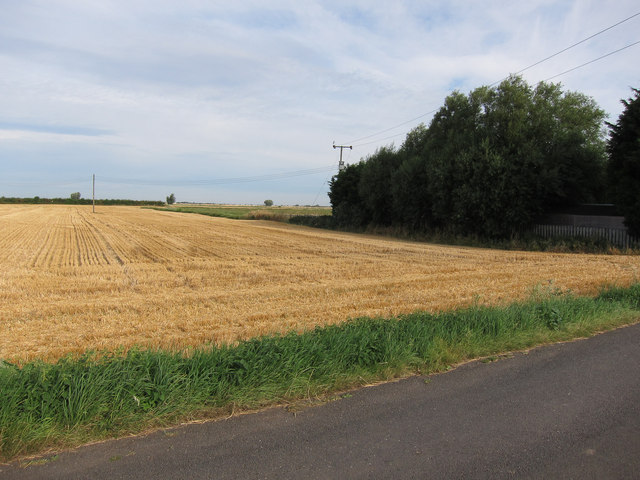Stubble field by Camel Drove