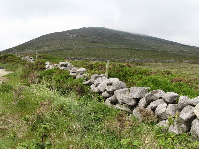 The southern facing slope of Moolieve from the track leading down to the Head Road