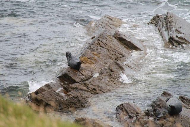 Rocks by Catti Geo