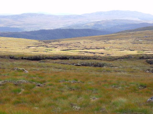 An Cam-allt above Glen Affric