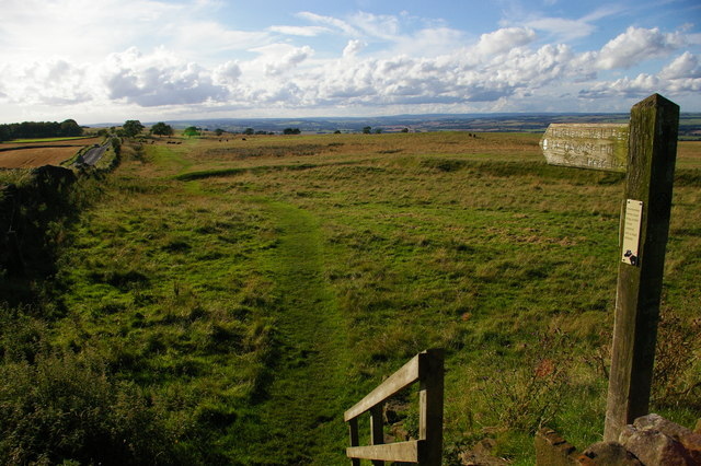Course of Hadrian's Wall and long distance path, Errington Hill Head